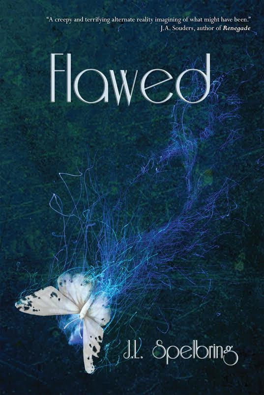 flawed book cover