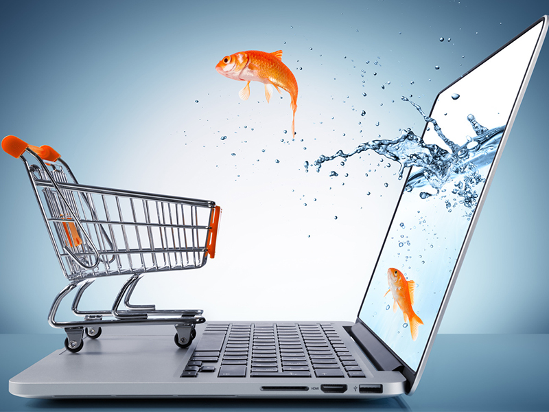 Indispensable Features For eCommerce Website