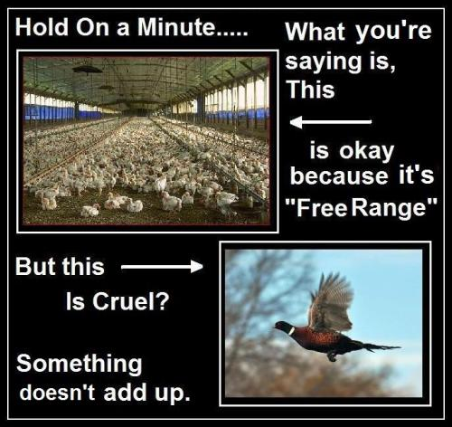 Firearms UK meme on hunting pheasant and raising chickens