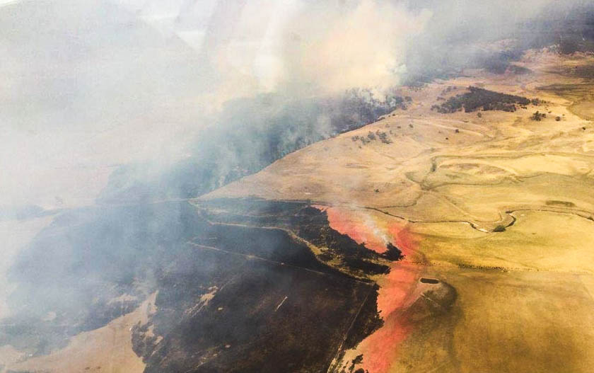 Retardant stops wildfire in New South Wales