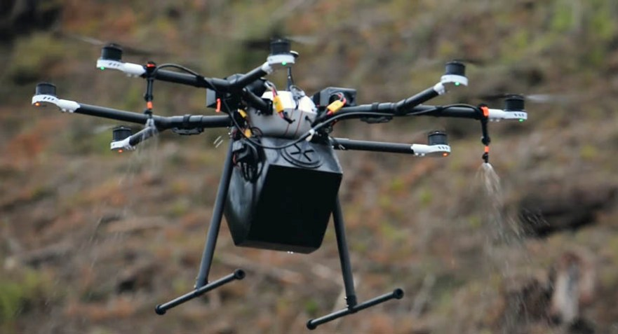 Replanting a burned forest with a swarm of drones - Wildfire
