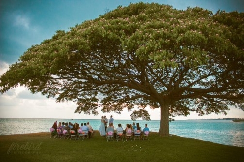 ceremony under the giant banyan tree