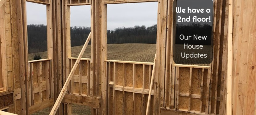 New House Update:  We have a 2nd floor!