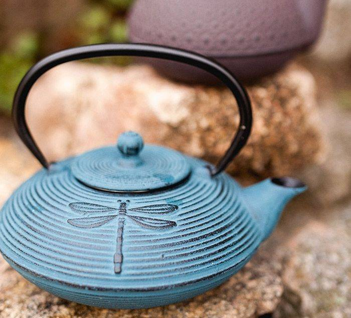 cast–iron-teapots-in-nature-TeaSpot