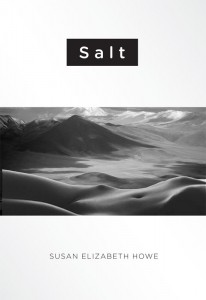 Salt Cover by Ron Stucki for Signature Books