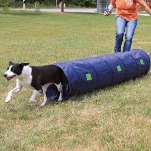 Agility tunnel til hvalpe og små hunde