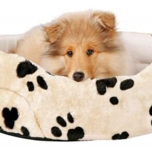 Hundeseng model Charlie, beige med poter, 50 x 43 cm