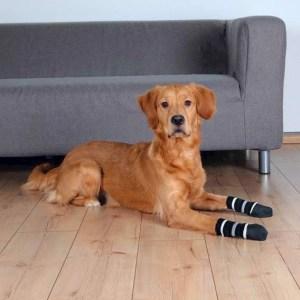 Hundesokker - Medium/Large