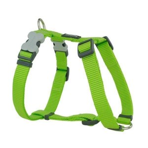 Red Dingo Sele, Lime, 36-54 cm