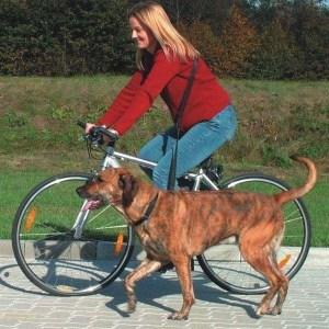 Sele til jogging- og cykeltur med hunden