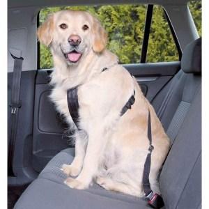 Sikkerhedssele til hunden, Large