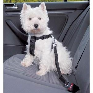 Sikkerhedssele til hunden, Small