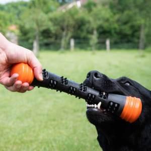 Dog Comets Meteor hoppende gummi kastelegetøj