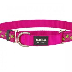 Red Dingo Halvkvæl halsbånd, Pink/Lime stjerner, 31 - 47 cm / 20 mm
