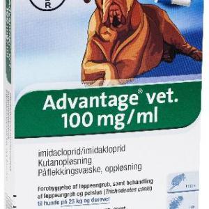Advantage Hund 25-40 kg