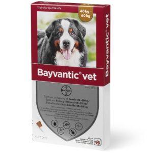 Bayvantic Vet hund 40-60 kg.