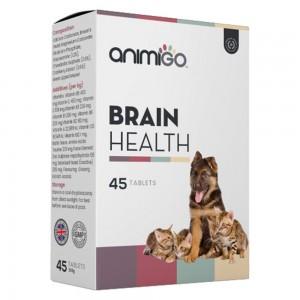 Sund Hjernefunktion