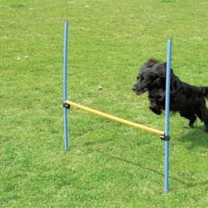 Pawise Agility Spring - 116cm