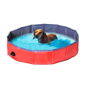 Hunde swimming Pool-M