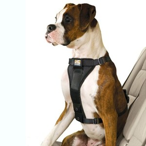 Kurgo Tru-Fit Smart sikkerhedssele-XL