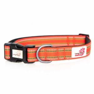 Long Paws orange hundehalsbånd-XL