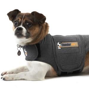 Thundershirt den bedste løsning mod angst hos hunde-L