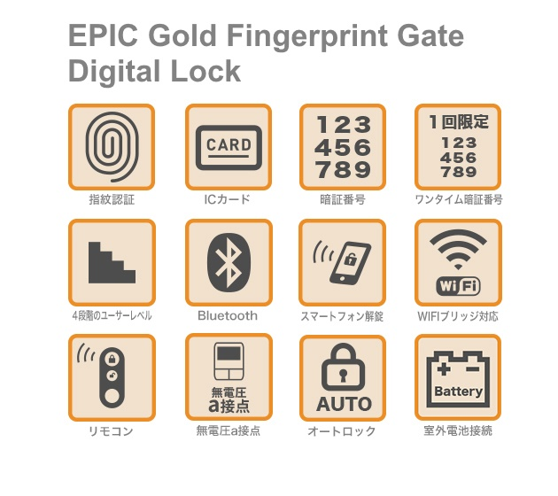 EPIC Gold Fingerprint Gate Digital Lock