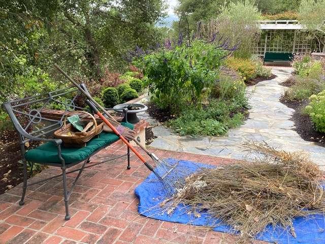 Fall-Garden-Maintenance-photo-by-Alice-Cason-8_12_2020-1.jpeg