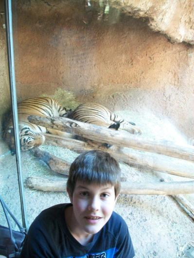 Bradley and his Tigers
