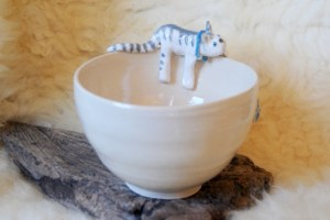 Cat on a bowl