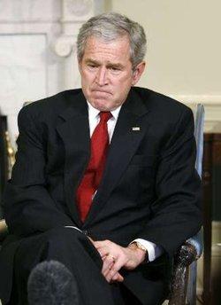 Bush think