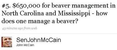 Mccain beaver twit