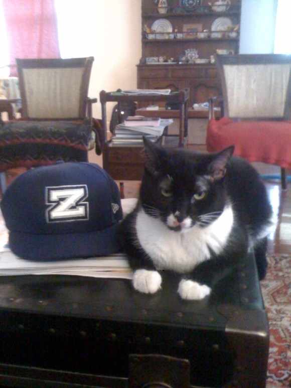 Della Z Cat