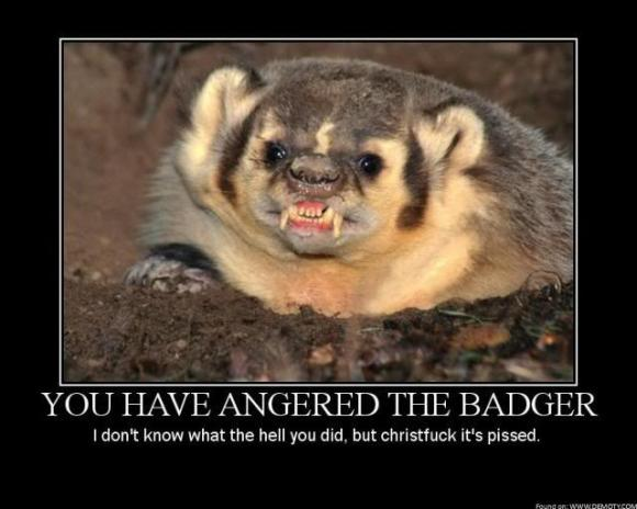 You-Have-Angered-The-Badger