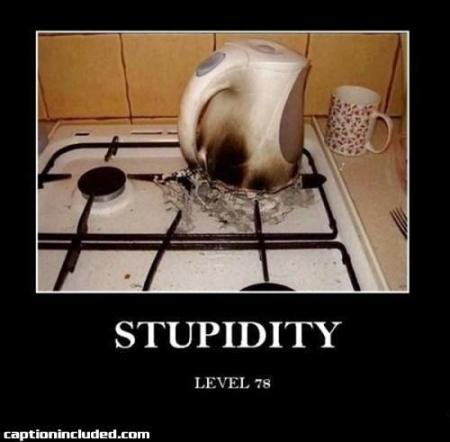 StupidityLevel