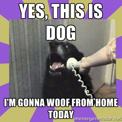 WoofFromHome