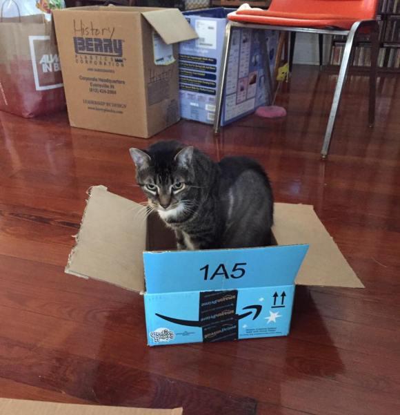 blue-box-boy