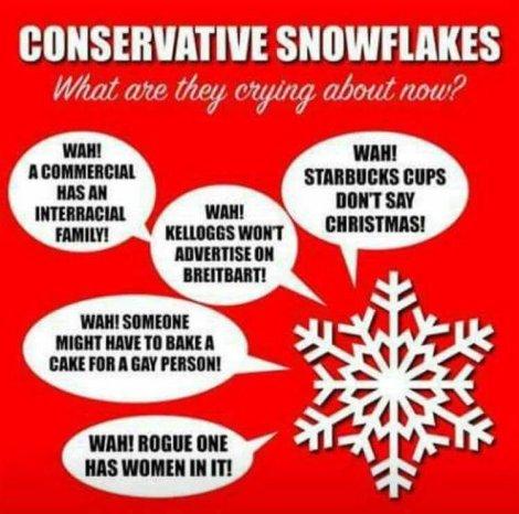 SnowflakeConservative