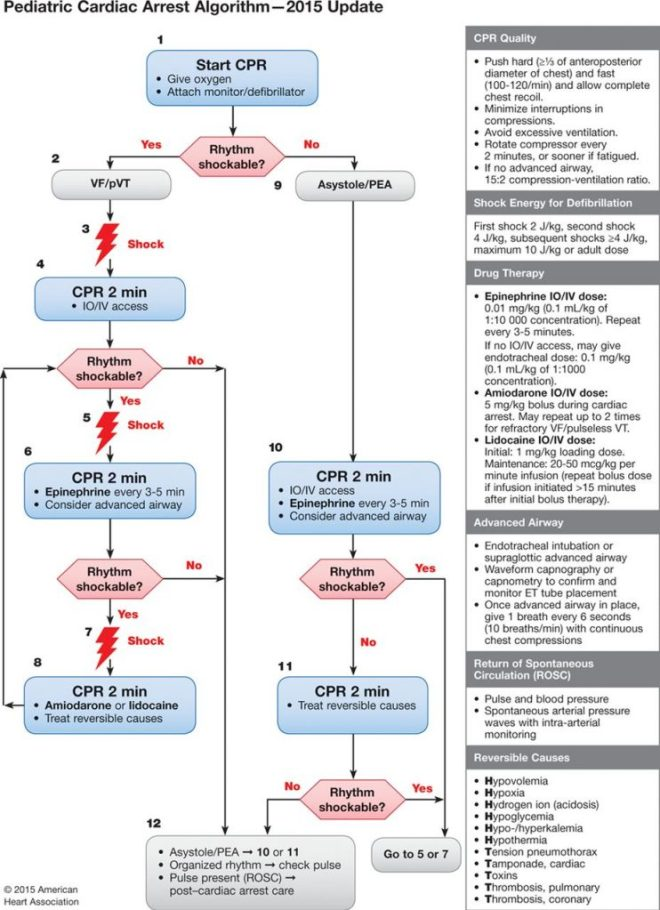 AHA 2015 pediatric cardiac arrest algorithm