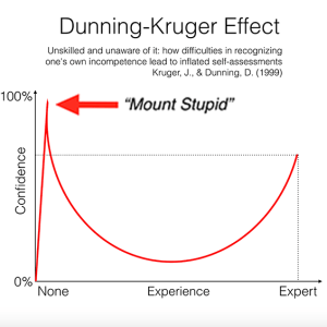 Dunning Kruger Effect and Mount Stupid 60px.png