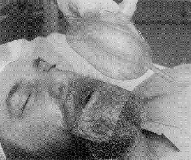 BVM with a beard from Johnson 1999.jpeg