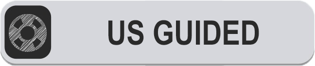 ULTRASOUND GUIDED BUTTON.png