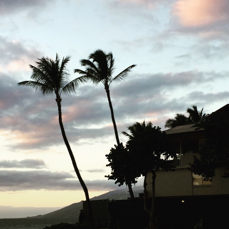 Maui Winter Vacation Introduction