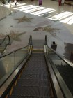By escalator at Cherry Hill Mall
