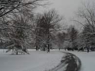 Knight Park, Collingswood, NJ