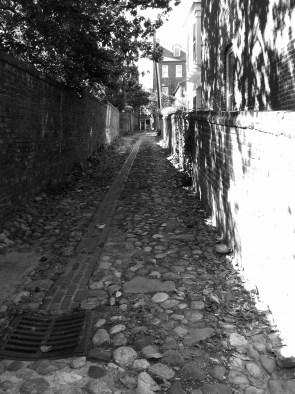 The bumpy texture of an alleyway in Old Town Alexandria, VA