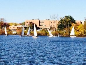 delicate sailing 2