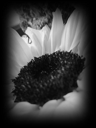 BW flower 1
