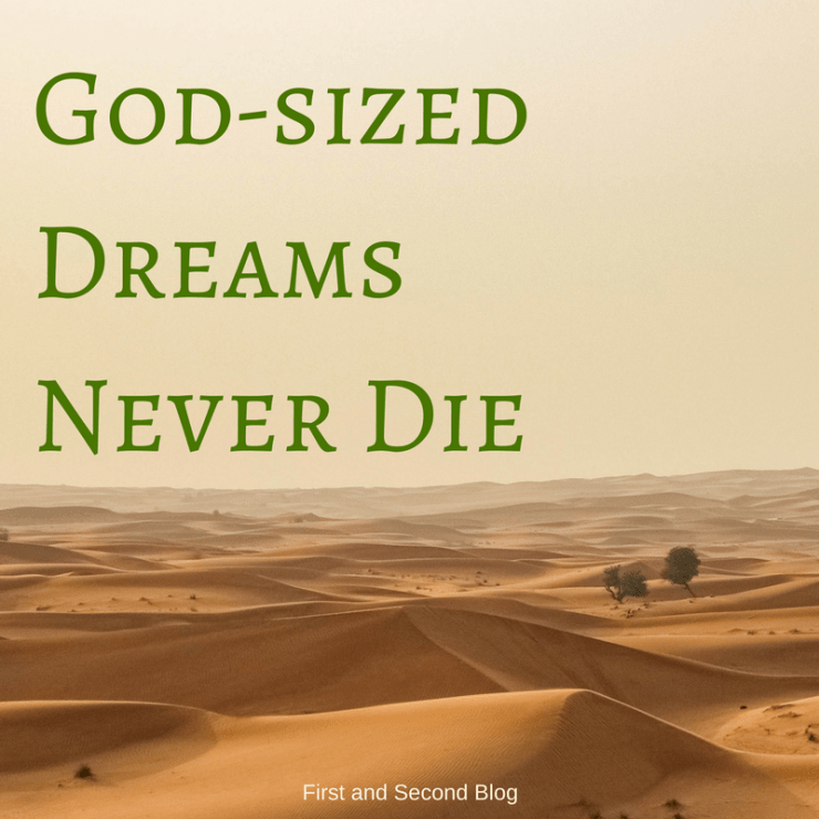 Guest post for God-sized Dreams