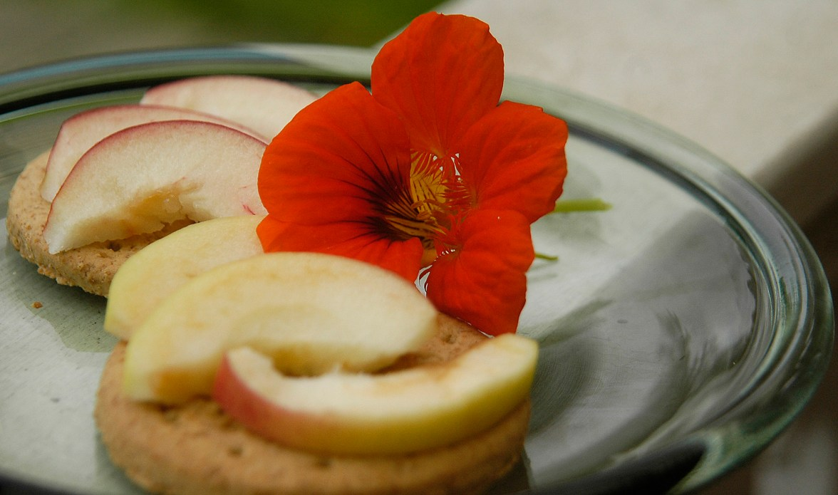 apple and digestive